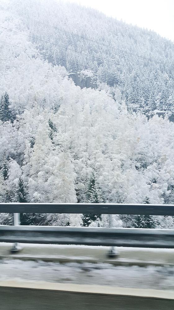 스위스를 떠나오는 날 마침 눈이 오기 시작했다. 겨울왕국 스위스답게 잠깐 사이에 주위가 온통 하얗게 눈에 덮였다. [사진 장채일]