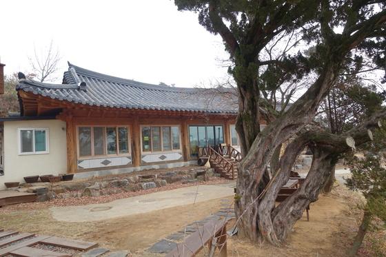 '소박한 밥상' 음식점 건물. 마당 앞 밑동이 용틀임하는 향나무 거목 아래 평상이 놓여있다.