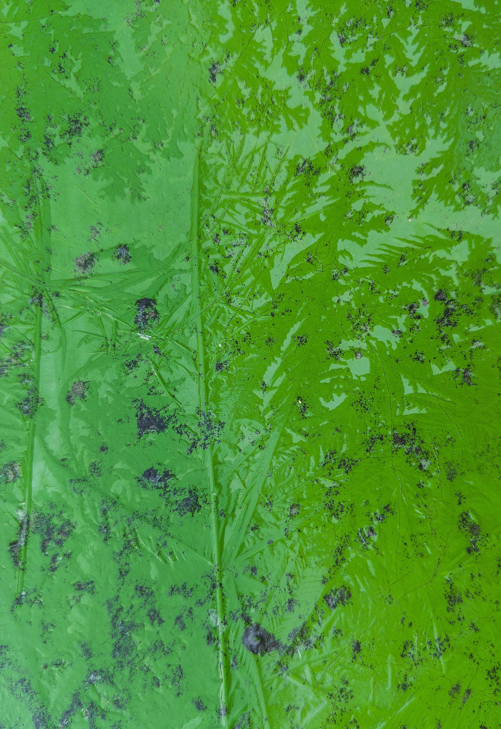 권혁재 핸드폰사진관 얼음숲