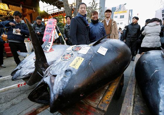 일본 참치 새해 첫경매가 5일 도쿄 쓰키지 시장에서 열렸다. 이날 405Kg의 참치를 경매에서 낙찰받은 스시체인 업체 사장인 히로시 오노데라 사장이 참치를 옮기고 있다. [로이터=연합뉴스]