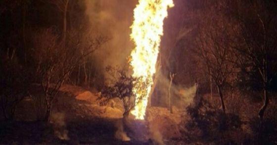 7일 오전 2시 57분 전북 완주의 한 야산 인근에서 15m 높이의 불기둥이 목격되 소방당국이 출동해 진화에 나섰다. [사진 전북소방본부]