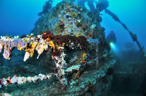 폐선을 개조해 만든 인공어초는 어군군집효과도 있지만 다이버드에게는 신비로운 볼거리를 제공해주는 역할도 한다. [사진 박동훈]