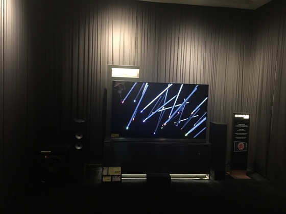 작은 극장 같은 공간에 따로 전시된 OLED TV [정원엽 기자]