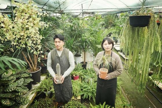 슬로우 파마씨의 정우성(왼쪽) 실장과 이구름 대표 부부. 식물을 보관하고 키우는 내곡동 화훼단지 안에서 포즈를 취했다. 오종택 기자