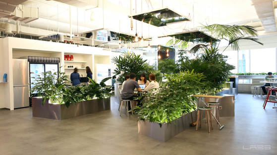 네이버 랩스의 초록색 휴게공간 역시 슬로우 파머씨의 작품이다. [사진 네이버랩스]