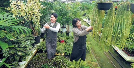 '식물을 처방한다'는 컨셉트의 조경회사 '슬로우 파마씨'를 운영하는 정우성 실장(왼쪽)과 이구름 대표.