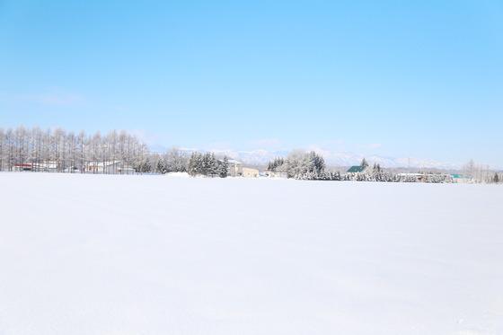 홋카이도 대지가 순백의 눈으로 덮였다. 한겨울 홋카이도를 찾는 여행자가 갈망하는 풍경이다. 도카치평원 뒤로 도카치연봉이 드러났다.