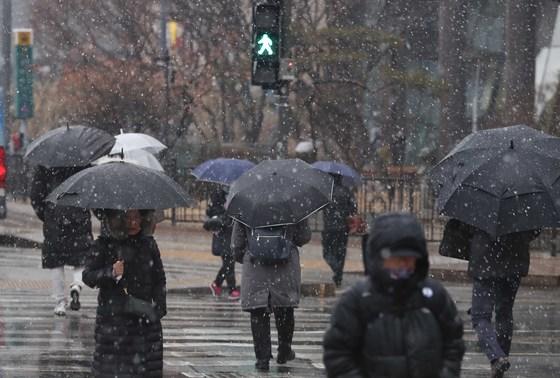 22일 서울 광화문 사거리에서 우산을 쓴 시민들이 발걸음을 재촉하고 있다. [뉴시스]