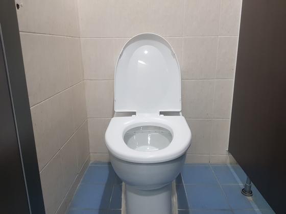 서울대 공과대학의 한 남자화장실에 설치된 일자형 변기. 지난해 2월 교체된 것인데 외관상으로는 기존 변기와 별 차이가 없다. 송우영 기자