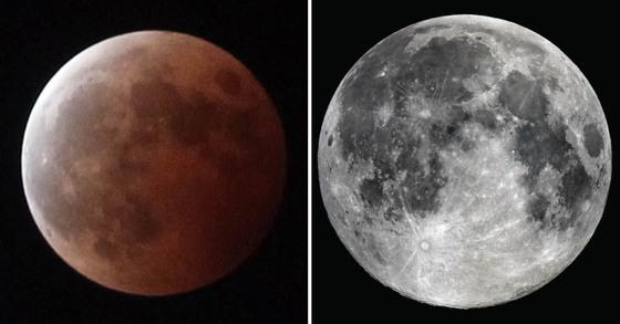 31일 밤 개기월식(좌)과 수퍼문(우), 블루문이 동시에 나타난다. [중앙포토]