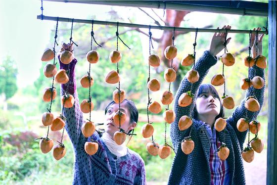 2015년에 개봉한 일본 버전, 영화 '리틀 포레스트:여름과 가을'편. 감을 널어 말리고 있다. [중앙포토]