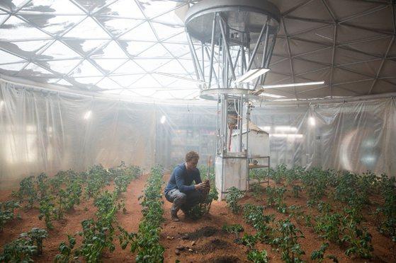 영화 '마션'에서 화성에 고립된 주인공 마크 와트니(배우 맷 데이먼)는 생존을 위해 식물을 재배한다. [중앙포토]