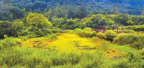 고창군은 2013년 유네스코로부터 생물권보전지역으로 지정된 곳이다.