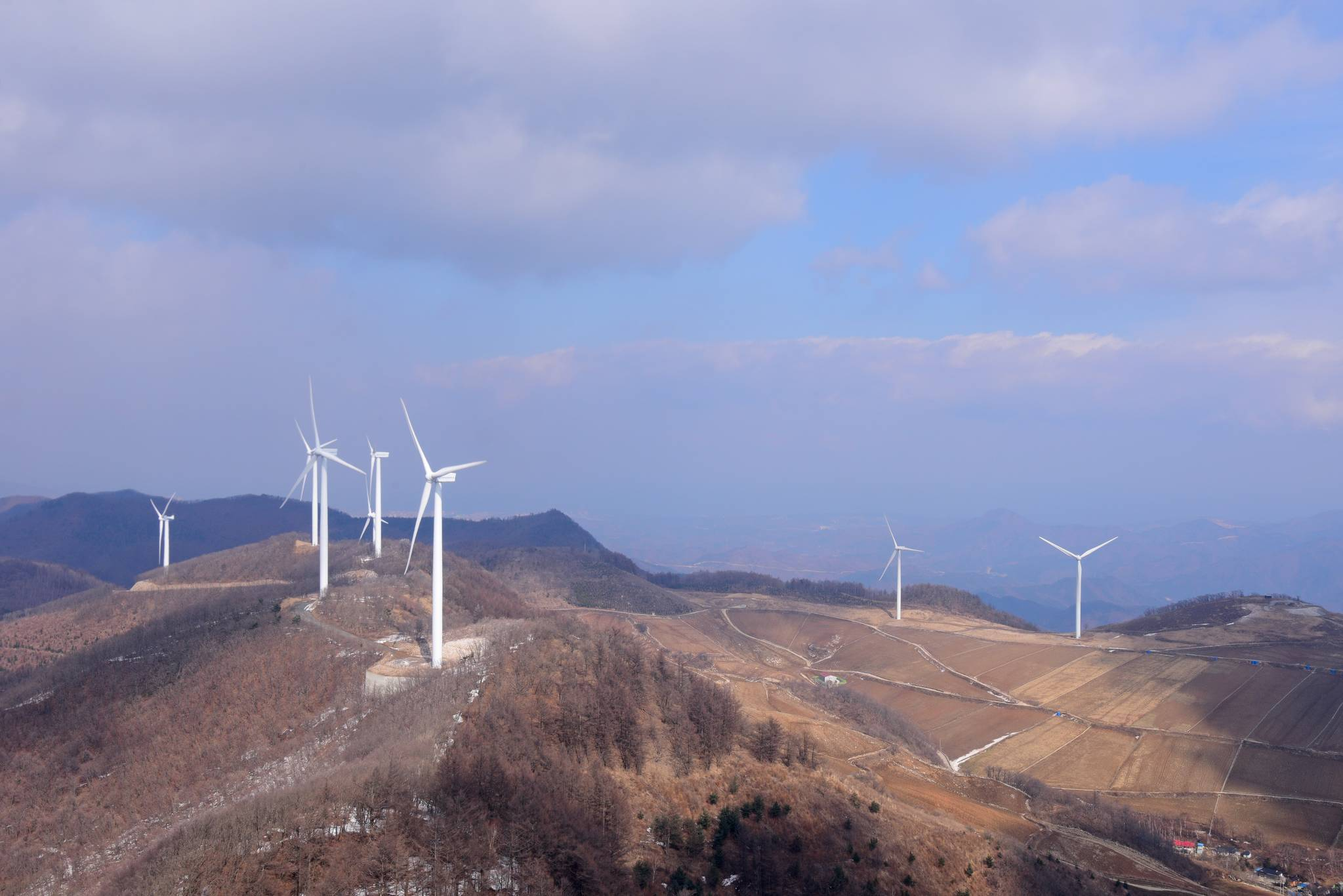 강원도 태백시 매봉산 주변 풍력발전단지 [사진 국립산림과학원]