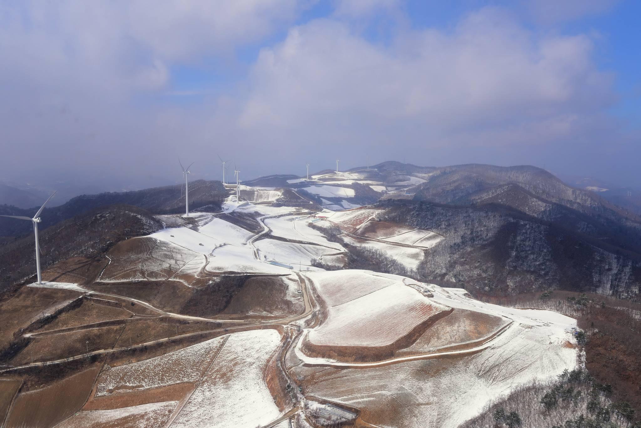 강원도 평창군의 고루포기산에 자리잡은 풍력발전단지 [사진 국립산림과학원]
