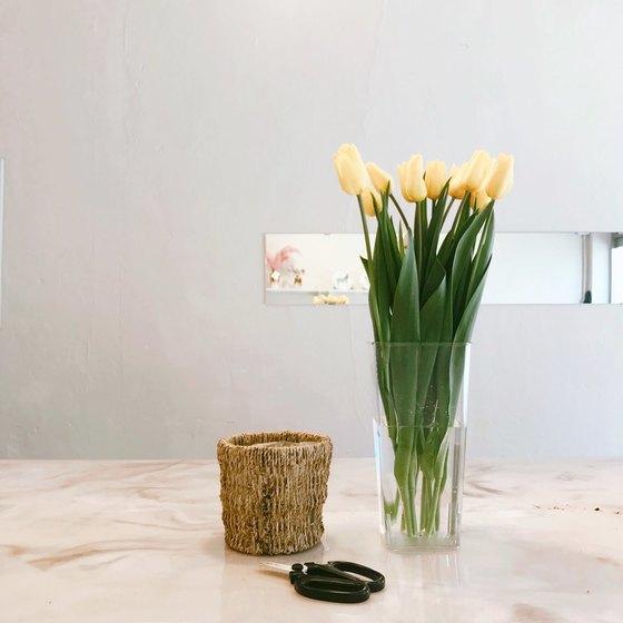 노란색 튤립의 꽃말은 짝사랑이다. [사진 류아은]