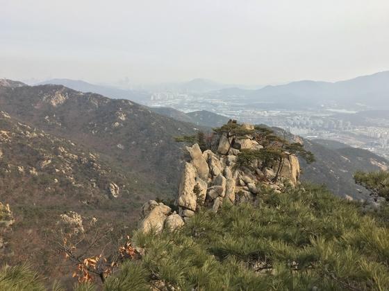 관악산 6봉 능선에 있는 코끼리 바위. [사진 하만윤]