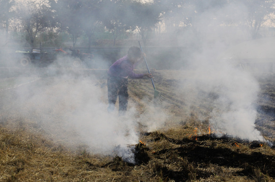 가을걷이가 끝난 농촌 들녘에 마늘모종을 심기 위해 볏집 태우는 연기가 피어 오르고 있다. 이름도 나이도 알려주지 않는 노모는 콧물인가 눈물인가를 연신 훌쩍 거리며 볏집을 끌어 모아 태우고 있다. [프리랜서 공정식]