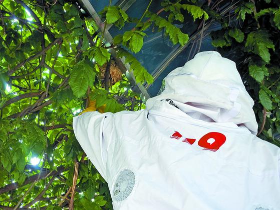 지난해 7월 벌집을 제거하는 광주 남부소방서 소방관의 모습. [연합뉴스]