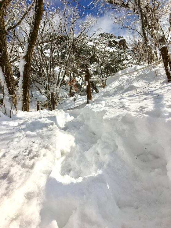 전날 도심에 비가 내리는 동안 북한산 정상은 눈으로 뒤덮였다. [사진 하만윤]