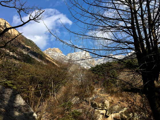 하산 길에 올려다본 백운대. 정상의 위엄이 고스란히 느껴진다. [사진 하만윤]