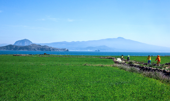 가파도는 4월이 가장 아름답다. 출렁이는 청보리밭 너머 산방산과 한라산이 한눈에 들어온다. 가파도에서만 볼 수 있는 풍광이다. [중앙포토]