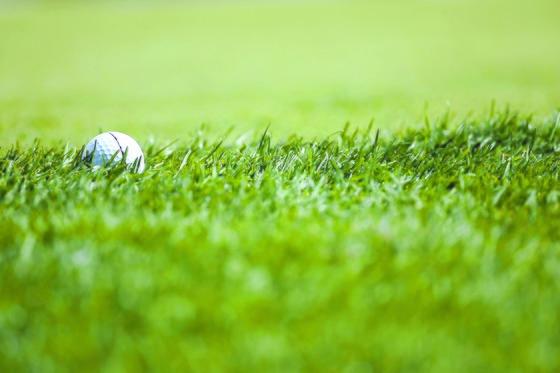 사업을 하는 김태곤 씨는 골프 매니어다. 50세가 되던 해 미국에서 골프 티징 프로 자격증도 받은 김태곤 씨는 본인이 좋아하는 골프를 통해 새로운 삶을 살고 있다. [중앙포토]