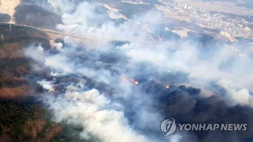 28일 강원도 고성에서 산불이 났다. [연합뉴스]
