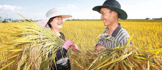 한국농어촌공사는 농지를 매개로 농가소득을 늘리고 농업 구조를 개선하기 위해 농지은행을 통해 다양한 사업을 시행한다. [사진 한국농어촌공사]