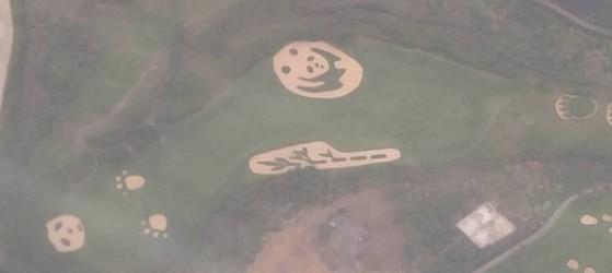 비행기 안에서 본 골프장의 모습. 판다와 대나무 모양으로 땅을 깎아 이색 조경을 하는 것이 한 때 유행이었다. [출처: 차이나랩]