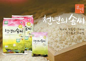 천년의솜씨는 안전농산물 생산제도인 GAP 인증을 받은 쌀만을 생산?판매하고 있다. [사진 부안군]