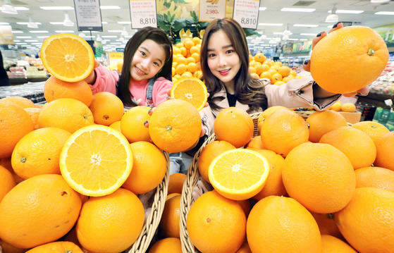 이마트 용산점 과일 매장에서 모델들이 오렌지를 선보이고 있다. [뉴스1]