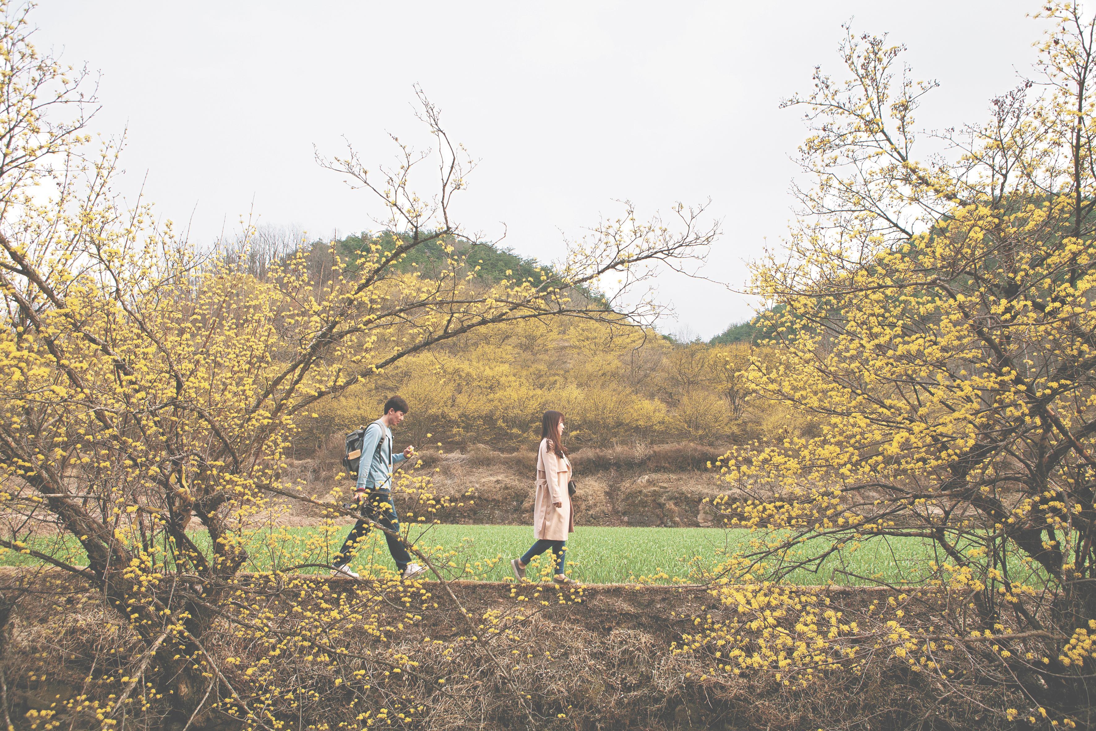 나는 끝 모르는 길을 걸어가면서 주위에 펼쳐진 색의 아름다움을 마음껏 즐기며 갈 것이다. [중앙포토]