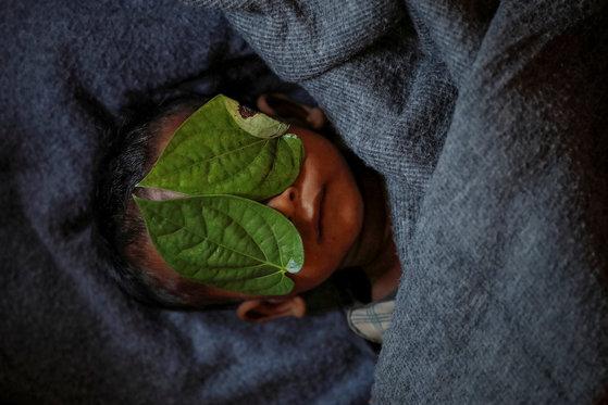 방글라데시 난민캠프에서 사망한 11개월 된 로힝야족 아기의 얼굴을 가족들이 나뭇잎을 덮어줬다. 지난해 12월 4일 촬영됐다. [로이터=연합뉴스]