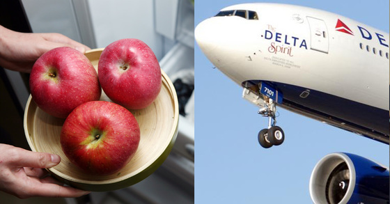 한 미국 여성이 델타항공 여객기의 승무원이 준 사과를 들고 내렸다가 세관에 절발돼 500달러의 벌금을 내게 됐다.[중앙포토]