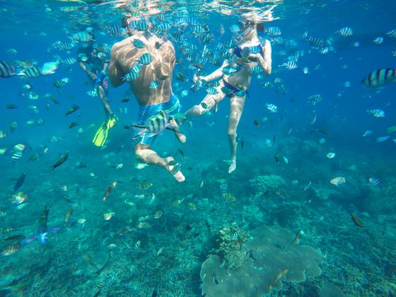 해양공원으로 지정된 르당 앞바다는 시야가 맑아 수많은 물고기와 잘 보존된 산호를 만날 수 있다.