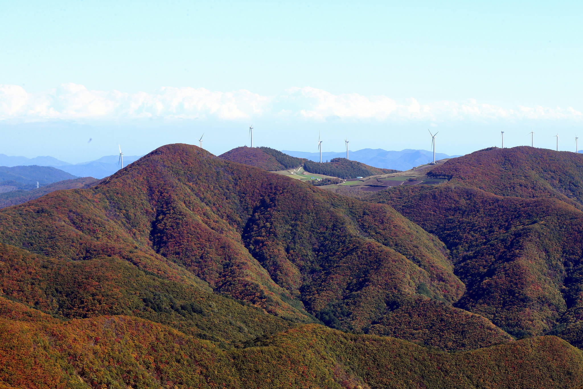 지난해 10월 해발 1천442m 강원 태백시 함백산 은대봉에서 바라본 백두대간이 단풍으로 물들어 있다. [연합뉴스]