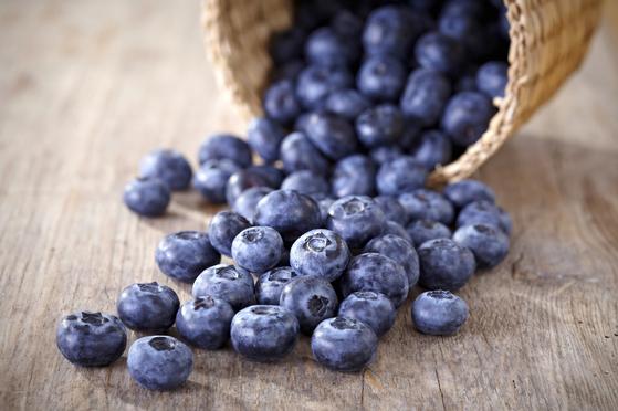 블루베리에 많이 함유된 안토시아닌은 항노화 및 시기능 개선에 효과가 있다. [중앙포토]