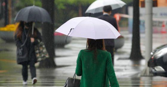 2일 전국에 봄비가 예보됐다. 비는 남부지방을 시작으로 낮부터 천천히 그치기 시작할 것으로 보인다. 프리랜서 공정식