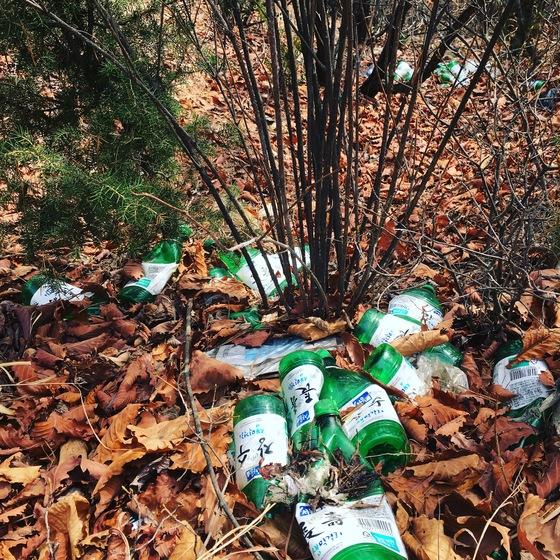 삼성산에 버려진 막걸리통. 이런 무책임한 행위들이 산에서의 음주금지를 불러왔다. 김홍준 기자