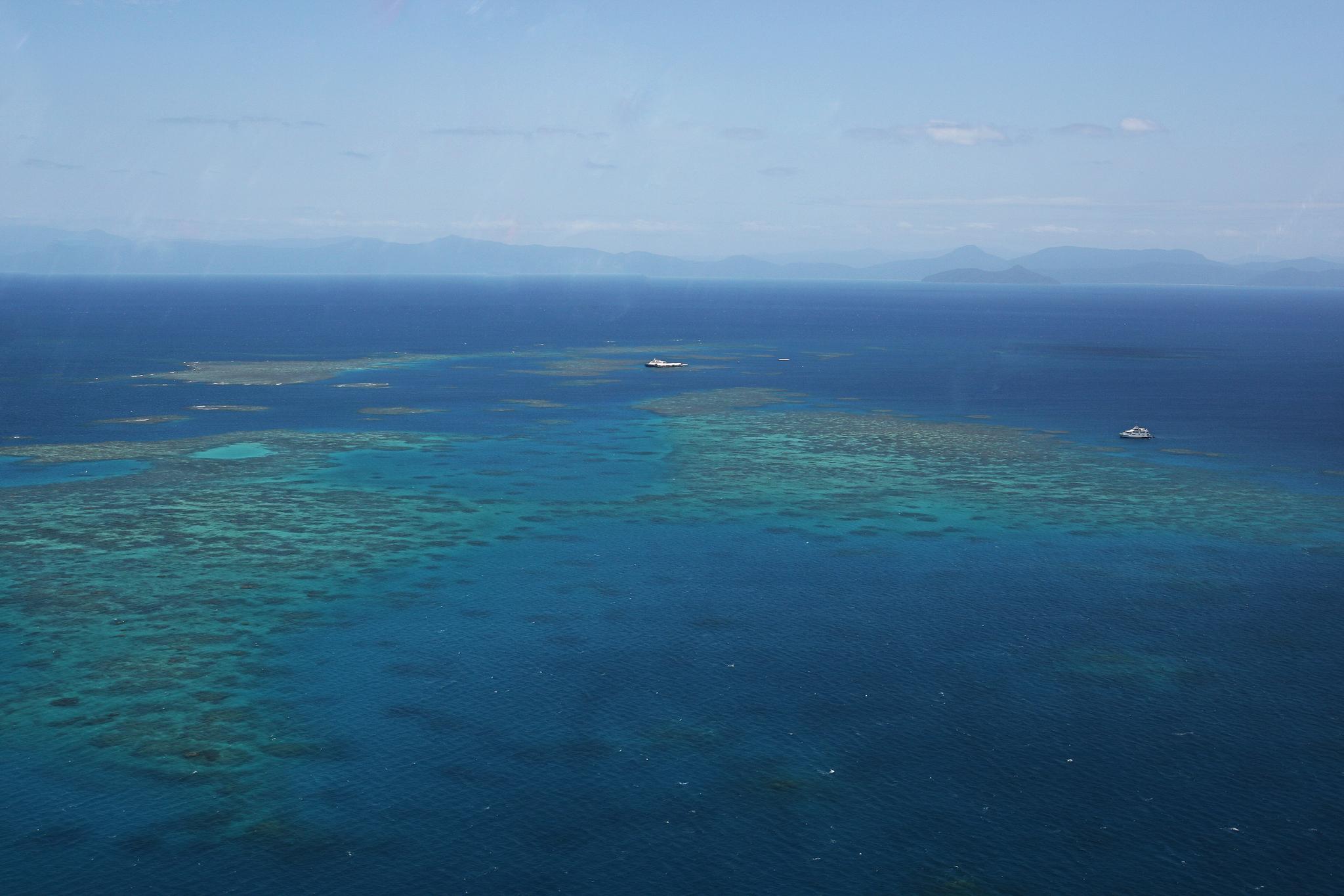 헬기에서 내려다본 호주 대산호초 군락. 한반도보다 더 큰 면적이어서 그 끝이 보이지 않을 정도로 넓고 길다. [중앙포토]