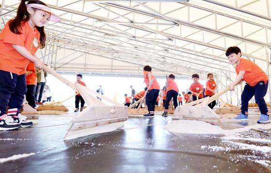 산골마을 충북 괴산 문광면에 건립한 소금랜드 염전체험장에서 아이들이 소금 수확 체험을 하고 있다. 프리랜서 김성태