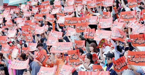 올해 한화 이글스 돌풍의 주역인 한화 광팬들이 13일 오후 대전 야구장에서 열린 NC 다이노스와의 경기를 관람하며 열띤 응원을 하고 있다. 프리랜서 김성태