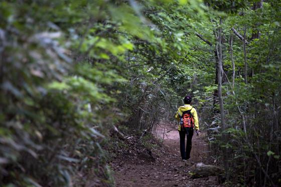 2017년 11월 개통한 달마고도. 미황사에서 출발해 미황사로 되돌아오는 걷기여행 길이다.