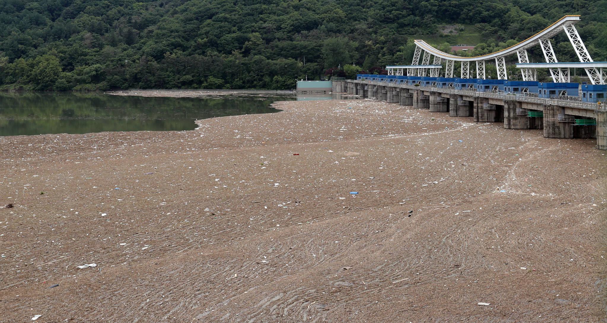 휴일인 22일 오후 경기도 하남시 팔당댐 상류 부근에 지난 16~18일 내렸던 집중호우에 떠내려온 쓰레기가 쌓여 있다. 김경록 기자