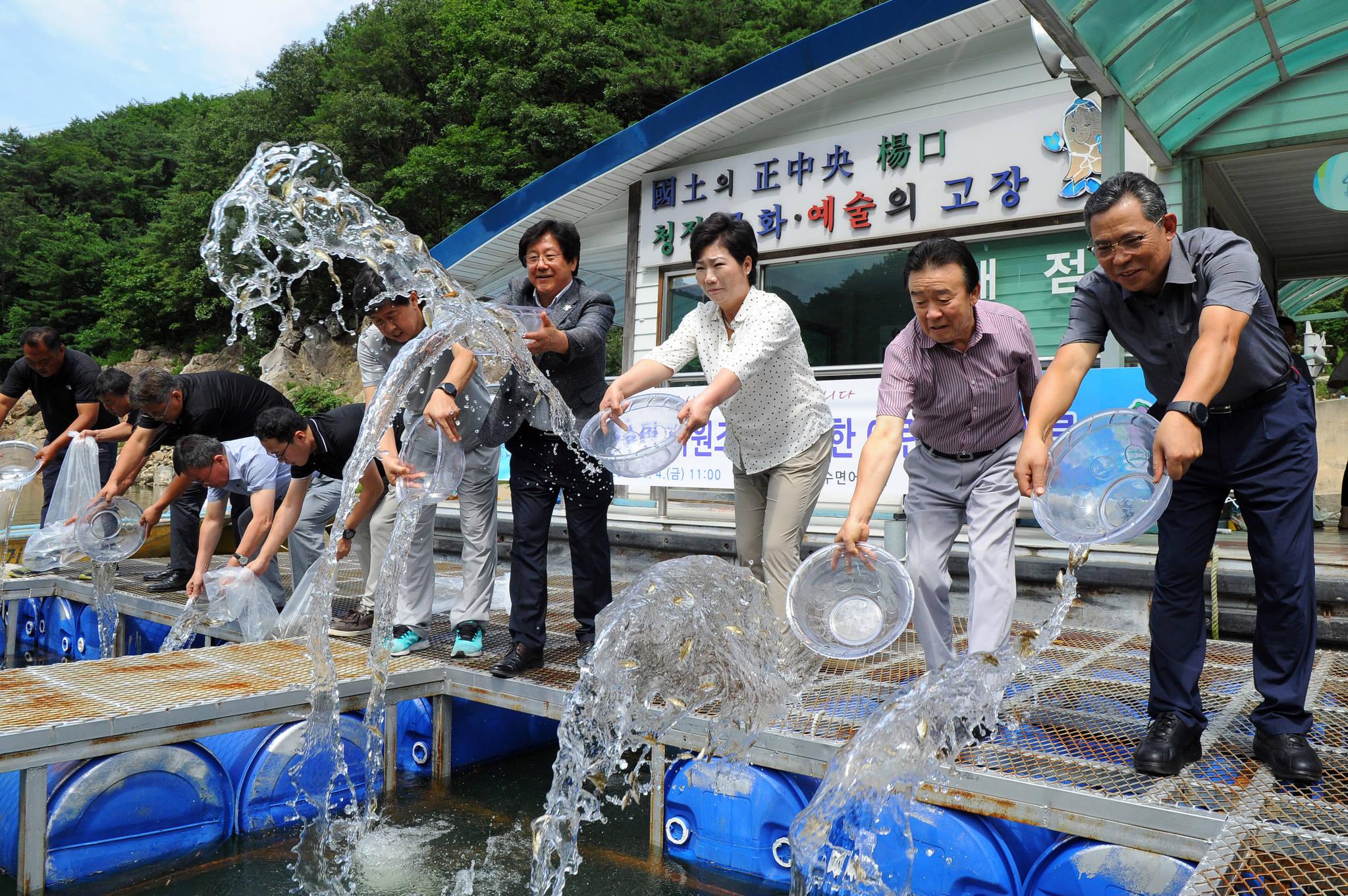 지난해 8월 4일 강원 양구군 양구선착장에서 어린 뱀장어와 쏘가리를 소양호에 방류하는 행사가 열리고 있다. [양구군 제공=연합뉴스]