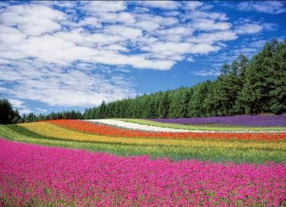 일본 북해도 후라노