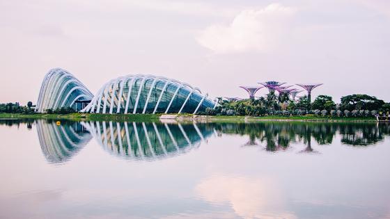 싱가포르 가든스 바이 더 베이 전경 [가든스 바이 더 베이 홈페이지]