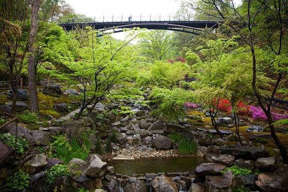 화담숲의 봄 풍경. 다리 아래 왼쪽이 이끼원이고 오른쪽이 철쭉원이다. 명품 정원 같은 풍경이다.[중앙포토]