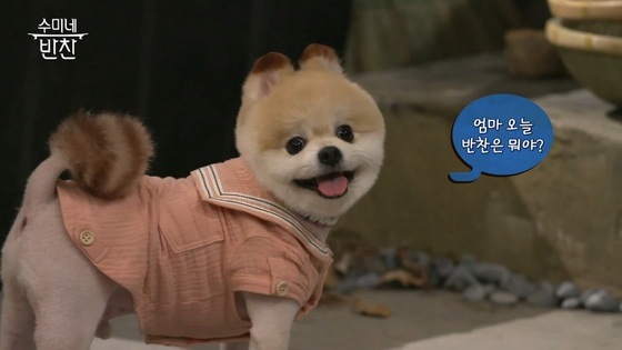 tvN 예능 '수미네 반찬' [사진 tvN]
